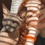 Рисунок профиля (Олеся Блазнина САБ-312)