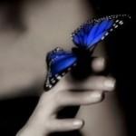 Рисунок профиля (Наталья Самохина)