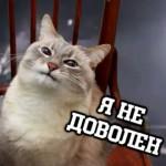 Рисунок профиля (Михаил Борисенко)